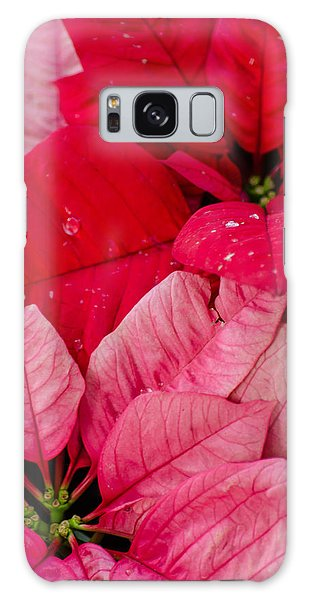 Poinsettias For The Holidays Galaxy Case
