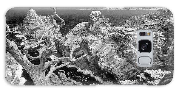 Galaxy Case - Point Lobos Ir 0605 by Bob Neiman