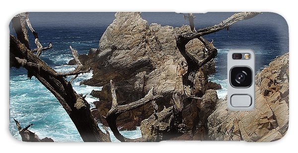 Point Lobos Rocks And Branches Galaxy Case
