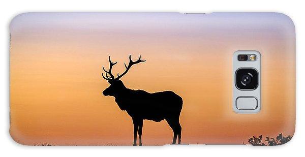 Point Reyes Elk Galaxy Case