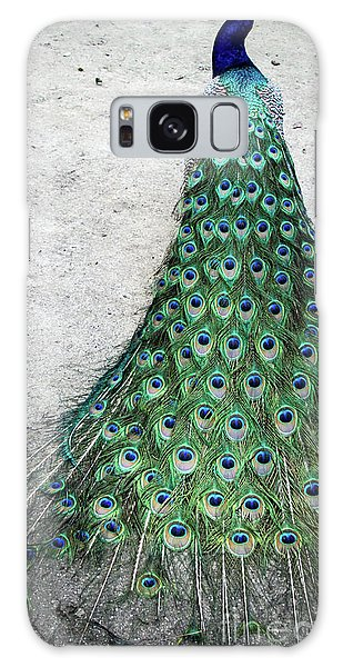 Poised Peacock Galaxy Case