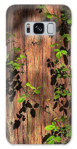 Poison-oak On Incense Cedar Galaxy Case