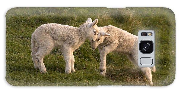 Sheep Galaxy Case - Poke by Angel Ciesniarska