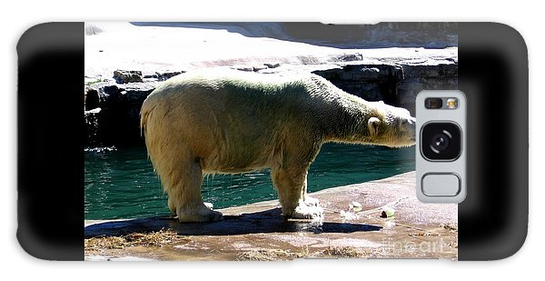 Galaxy Case featuring the photograph Polar Bear 3 by Rose Santuci-Sofranko