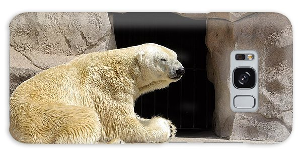 Polar Bear Prayers Galaxy Case
