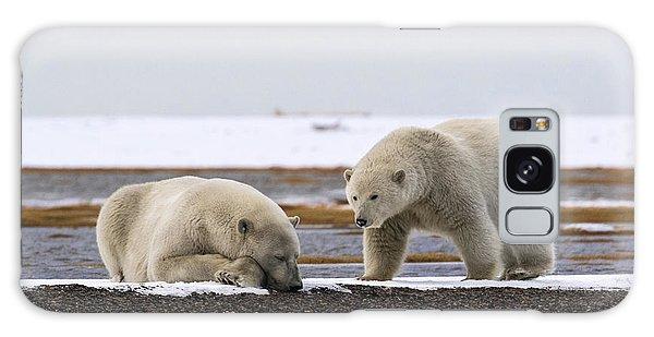 Polar Bear Zzzzzzz's Galaxy Case
