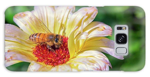 Pollen Galaxy Case - Pollenating by Rick Berk