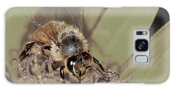 Pollinating Bee Galaxy Case