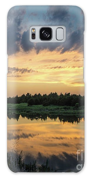 Pond And Sunset Galaxy Case