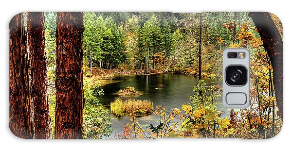 Pond At Golden Or. Galaxy Case