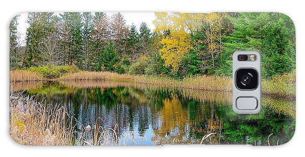 Wellsboro Galaxy Case - Pond In Wellsboro by Krystal Billett