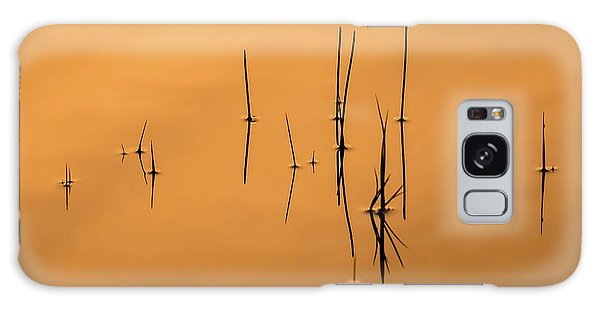 Pond Reeds In Reflected Sunrise Galaxy Case