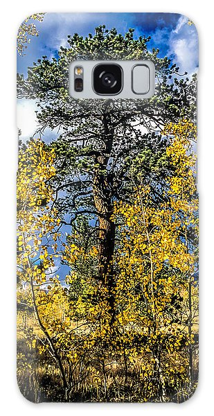 Ponderosa  Tree In The Aspens Of Fall Colorado Galaxy Case