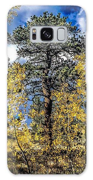 Ponderosa  Tree In The Aspens Of Fall Colorado Galaxy Case