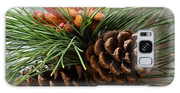 Ponderosa Pine Cones Galaxy Case by Karon Melillo DeVega