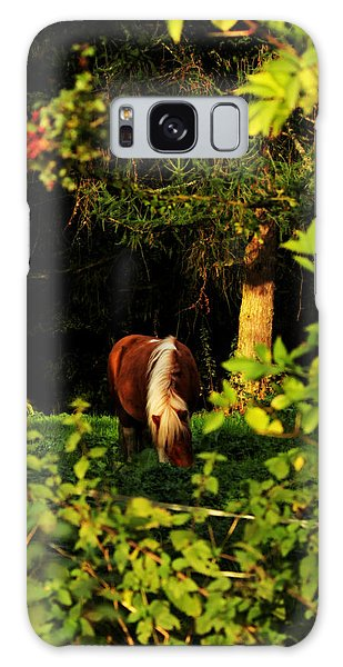 Pony In Sun-dappled Meadow Galaxy Case