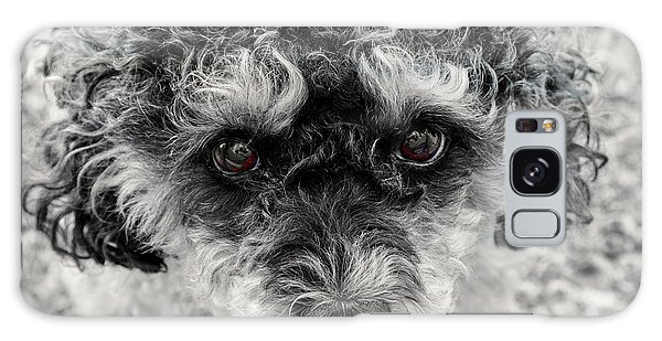 Poodle Eyes Galaxy Case