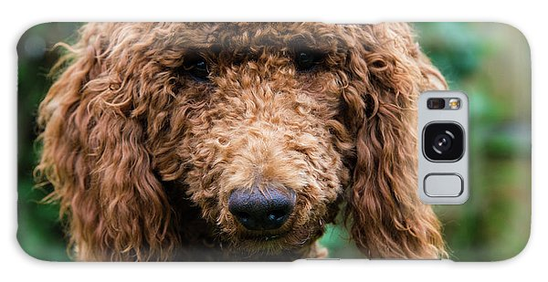Poodle Pup Galaxy Case