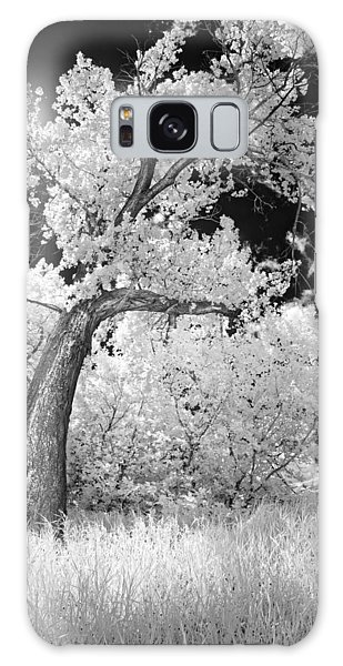 Poplars Under The Sun Galaxy Case
