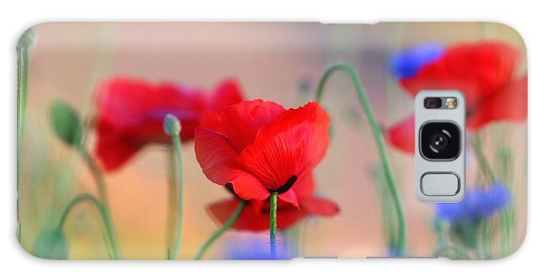 Poppies In Spring  Galaxy Case