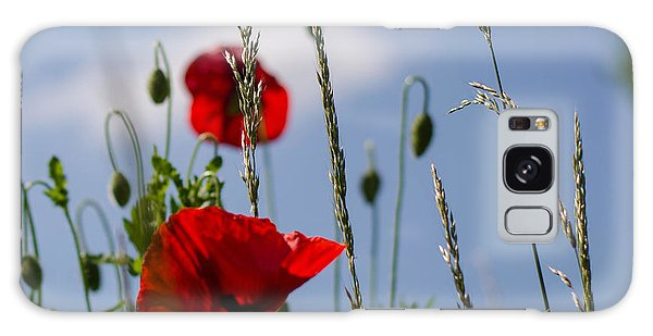 Poppies In The Skies Galaxy Case