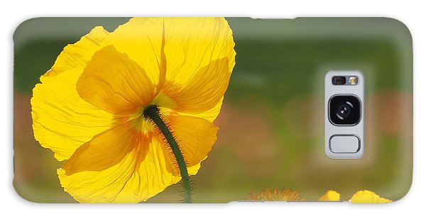 Poppies Seeking The Light Galaxy Case