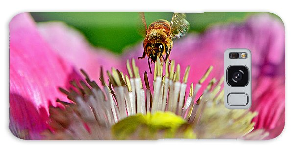 Poppy And A Bee 006 Galaxy Case by George Bostian