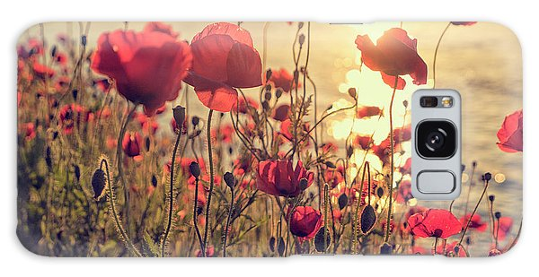 Poppy Flowers At Sunset Galaxy Case