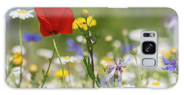 Poppy In Meadow  Galaxy Case