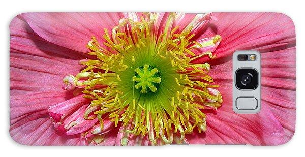 Poppy Galaxy Case