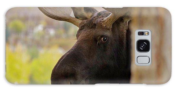 Portrait Of A Bull Moose Galaxy Case