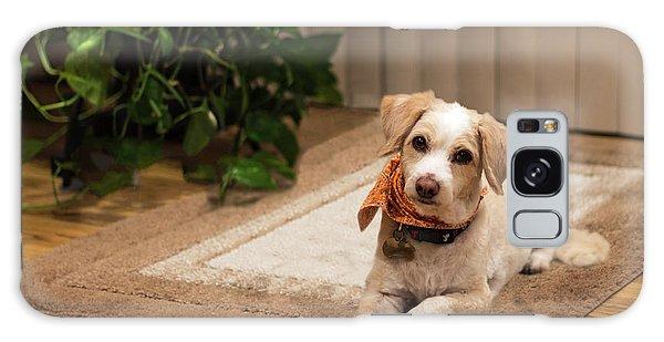 Portrait Of A Dog Galaxy Case