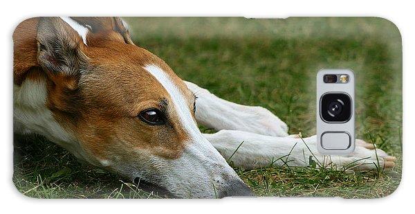 Portrait Of A Greyhound - Soulful Galaxy Case by Angela Rath
