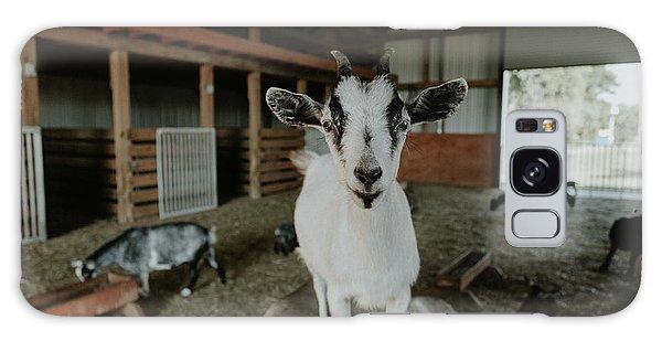 Portrait Of A Happy Goat Galaxy Case