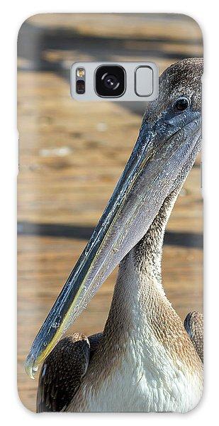 Portrait Of A Pelican On The Pier Galaxy Case