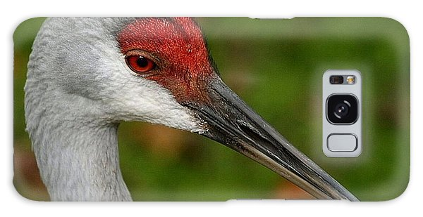 Portrait Of A Sandhill Crane Galaxy Case