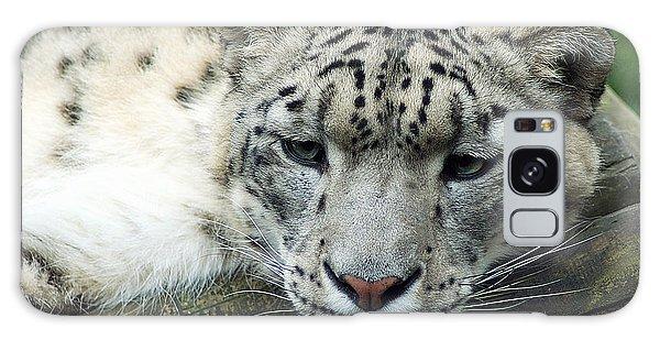 Portrait Of A Snow Leopard Galaxy Case