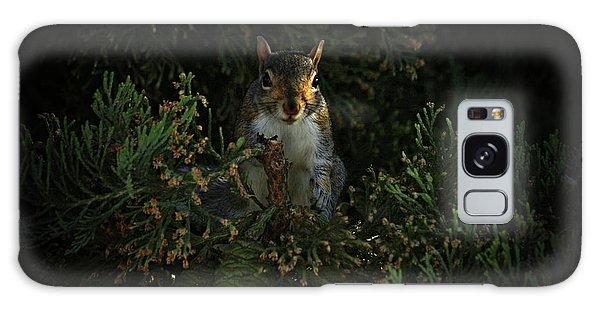 Portrait Of A Squirrel Galaxy Case