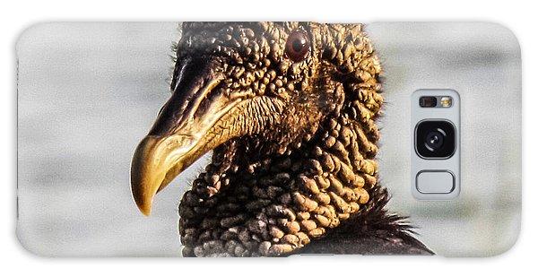 Portrait Of A Vulture Galaxy Case