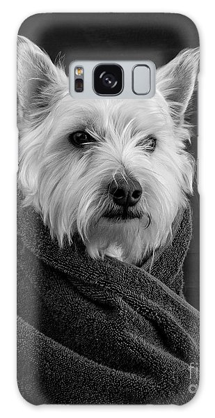Galaxy Case featuring the photograph Portrait Of A Westie Dog 8x10 Ratio by Edward Fielding