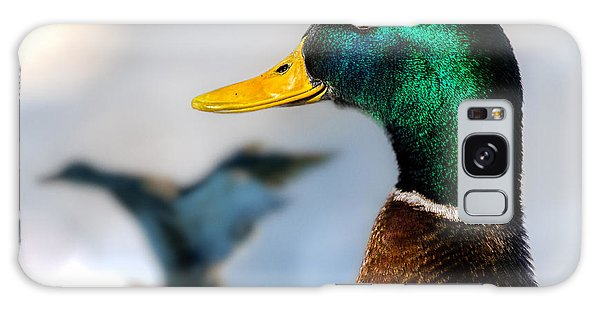 Portrait Of Duck 2 Galaxy Case