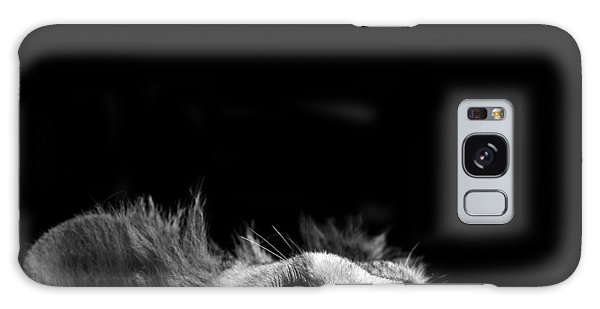 Lion Galaxy Case - Portrait Of Lion In Black And White IIi by Lukas Holas