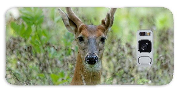 Portriat Of Male Deer Galaxy Case