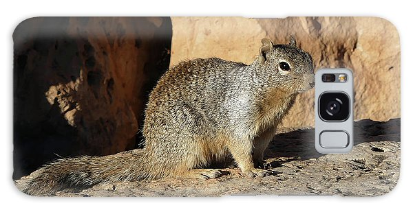 Posing Squirrel Galaxy Case