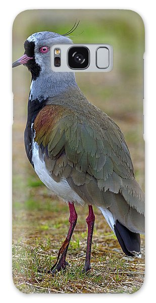 Lapwing Galaxy Case - Positive Spurs by Tony Beck