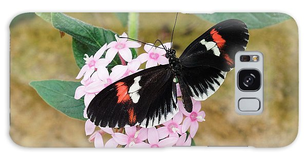 Galaxy Case featuring the photograph Postman Butterfly, Heliconius Melpomene by Paul Gulliver