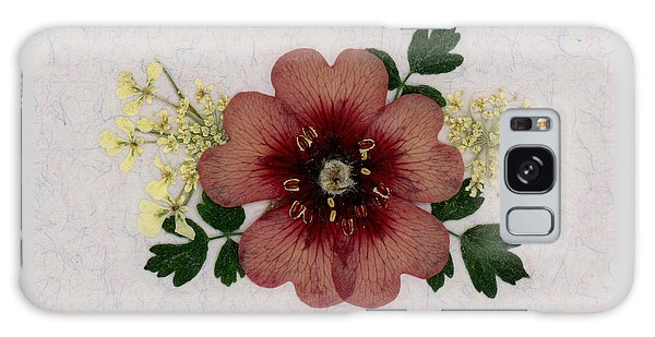 Potentilla And Queen-ann's-lace Pressed Flower Arrangement Galaxy Case
