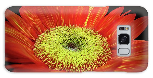 Prado Red Sunflower Galaxy Case