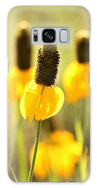 Prairie Coneflower In Morning Light Galaxy Case