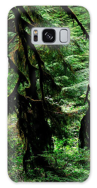Prairie Creek Redwoods State Park 12 Galaxy Case